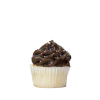 mini chocolate birthday cupcake
