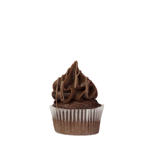 mini chocolate fudge cupcake
